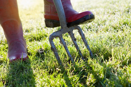 Aerating Your Lawns Grass and Soil | Lawn Aeration