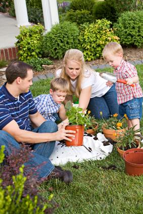 Diy Lawn Care Tips